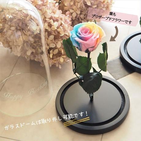 【名入れ】プリザーブドフラワー レインボーローズ ''Rainbow Dome'' ガラスドーム パステルカラーレインボーローズ茎までプリザーブドフラワー