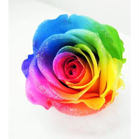 【送料無料】プリザーブドフラワー・花材 レインボーローズ Mサイズ ラメ入り