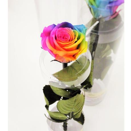 【送料無料】プリザーブドフラワー レインボーローズ 茎もプリザーブドフラワーの1輪挿し Sサイズ クリアボックス