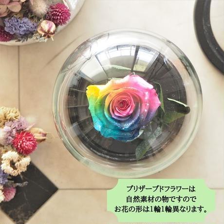 【名入れ】プリザーブドフラワー レインボーローズ ''Rainbow Dome'' ビビットカラー ガラスドーム レインボーローズ茎までプリザーブドフラワー