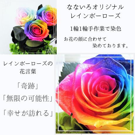 【名入れ】プリザーブドフラワー レインボーローズ ''Rainbow Dome'' パステルガラスドーム レインボーローズ茎までプリザーブドフラワー  :パステル: