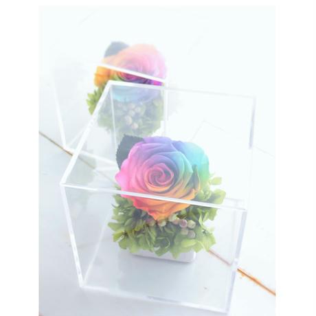 【送料無料】レインボーローズ プリザーブドフラワー ギフト クリアボックス Rainbowcollar プリザーブドフラワー プレゼント 誕生日 記念品 母の日  贈呈品 ブライダルギフト 結婚式