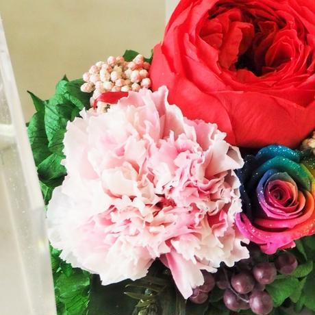 【名入れ】【送料無料】プリザーブドフラワー レインボーローズ メッセージ入り クリアケース パルフェシャーベット レッド 母の日 誕生日 記念日