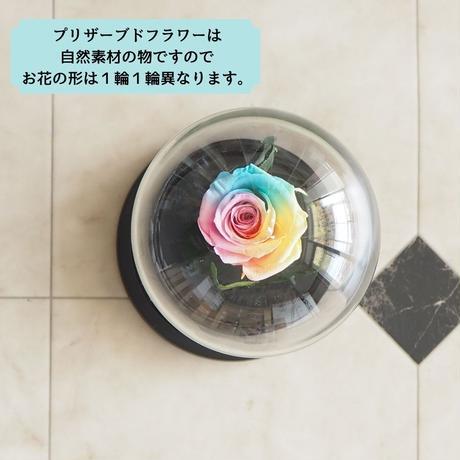 【母の日父の日限定】【名入れ】プリザーブドフラワー レインボーローズ ''Rainbow Dome'' パステルカラー ガラスドーム レインボーローズ茎までプリザーブドフラワー