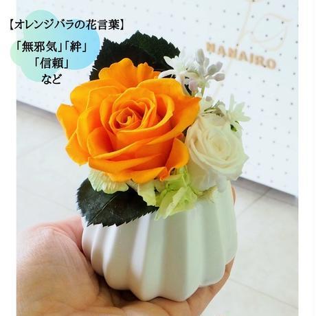 プリザーブドフラワー5color プチギフト  pleaat's アレンジ  赤  ピンク  黄色  オレンジ  ブルー  母の日 誕生日 退職 贈呈品  小ぶり アレンジ