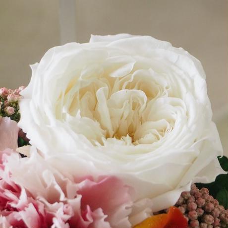 【名入れ】【送料無料】プリザーブドフラワー レインボーローズ メッセージ入り クリアケース パルフェシャーベット ホワイト 母の日 誕生日 記念日