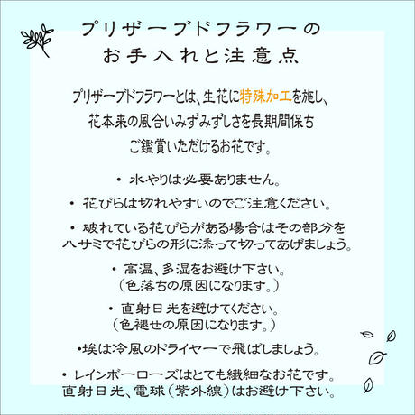 【名入れ】【送料無料】プリザーブドフラワー レインボーローズ  Poison Clear リンゴガラス レッド メッセージ可能 レッド 誕生日 母の日 ブライダル 贈呈品  のコピー