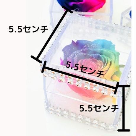 【送料無料】レインボーローズクリアキューブ