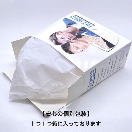 メガネ型フェイスシールド【送料無料】