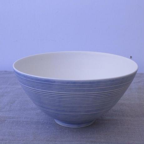 照井壮 鉢(青線)