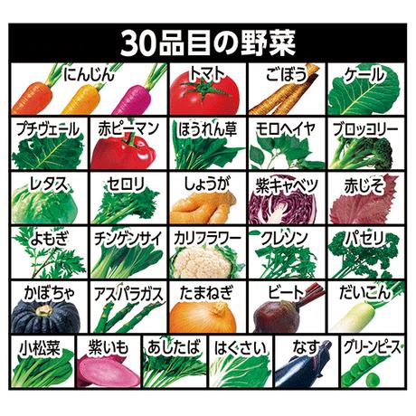【30本】野菜一日これ一本 長期保存用 190(400-704)