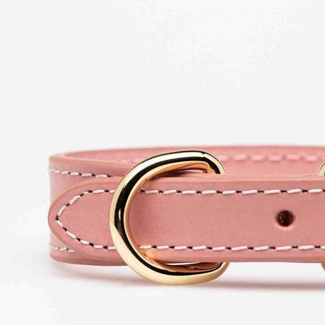 [Collar of Sweden] ピンク 首輪 スリム