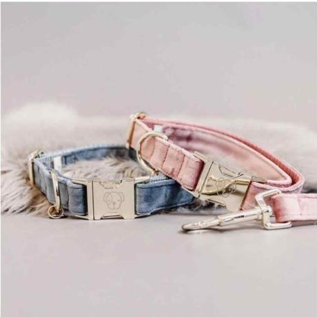 [Kentucky Dogwear] ベルベット首輪 ピンク/ブルー/ターコイズ/マスタード