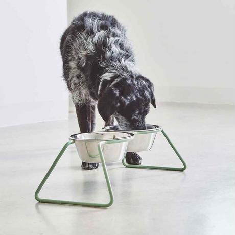 [MiaCara]  Dog Feeder  ダスティーグリーン