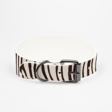 [Collar of Sweden] Zebra Wide M/L/MartingaleM