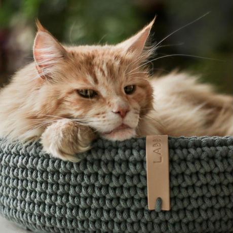 [Labbvenn] COCO Cat Bed スモーキーグリーン