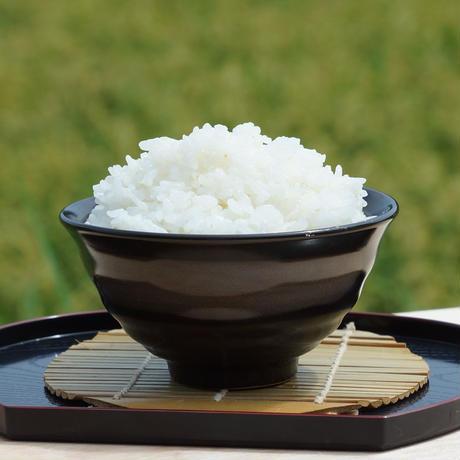 🉐定期便【新米】農薬不使用米 10㎏ 3か月定期便   (令和3年産)