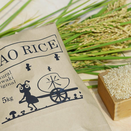 🉐定期便【新米】農薬不使用米 5㎏ 3か月定期便 (令和3年産)