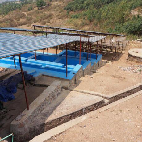 Rwanda Kinazi Washing Station Natural / 200g