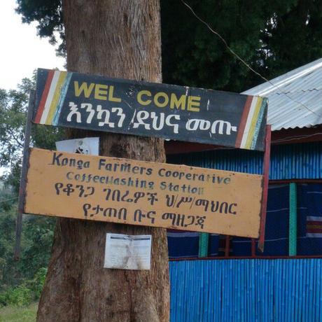 Ethiopia Yirgacheffe KONGA G1 / 100g