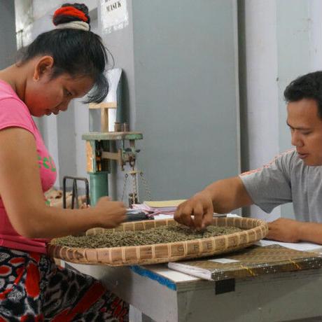 Indonesia Munthe DryMill Dolok Sanggul / 100g