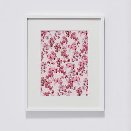 新作 flora (Phalaenopsis) /2020