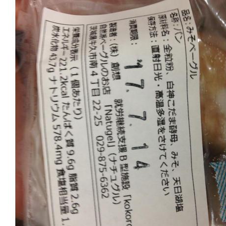 【ロスベーグル・送料込み・冷凍便】おまかせベーグルセット 10個セット