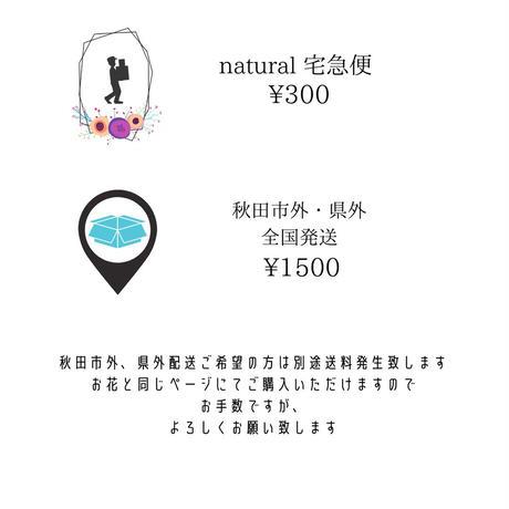 seasonアレンジメント naturalstyle