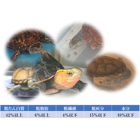 Turtle Feed 500g