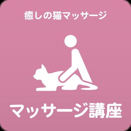 愛猫ちゃんに「癒しのマッサージ」講座