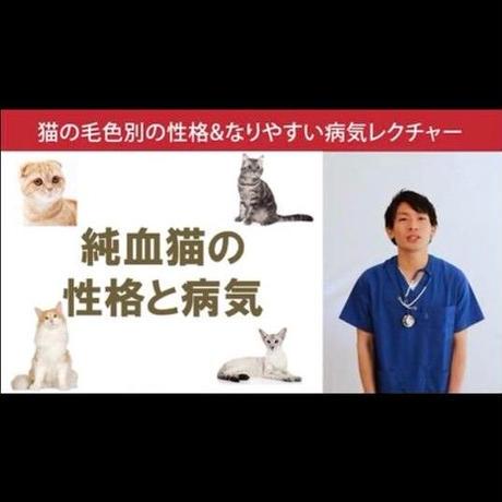 猫の「毛色別の性格&なりやすい病気」講座