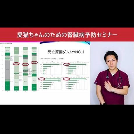 愛猫ちゃんの健康長寿のための「予防学」講座 【腎臓病編】