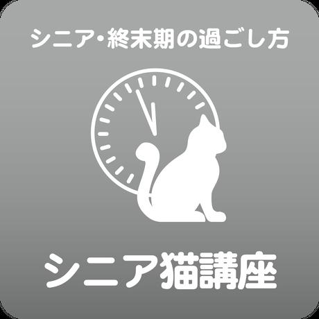 愛猫ちゃんの「健康寿命のためのシニアネコ」講座