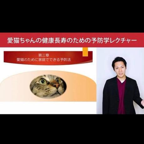 愛猫ちゃんの健康長寿のための「予防学」講座 【入門編】