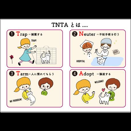 月々1000円 TNR&TNTA部 部費