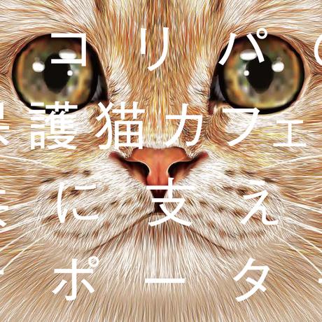 月々 12222円からの猫助け!ネコリパファンクラブ 12222円