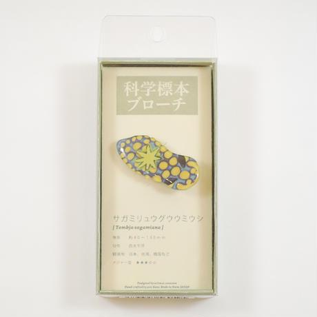 ぷろぼの 科学標本ブローチ(サガミリュウグウウミウシ)
