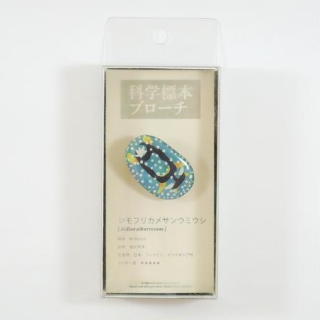 ぷろぼの 科学標本ブローチ(シモフリカメサンウミウシ)