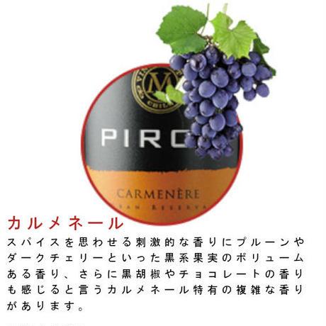 ピルカ・カルメネール ヴィニャ マーティ Pirca Carmenere Vina Marty 2018 (750ml)