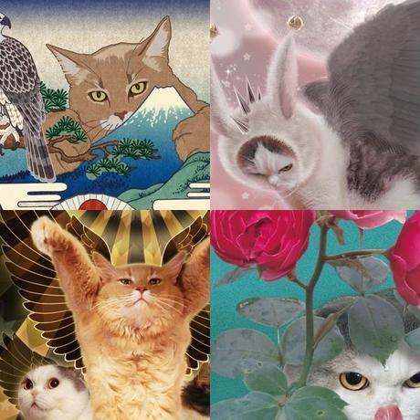 猫託ポストカード 4枚セット