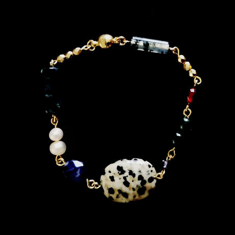 dalmatian : exhibition