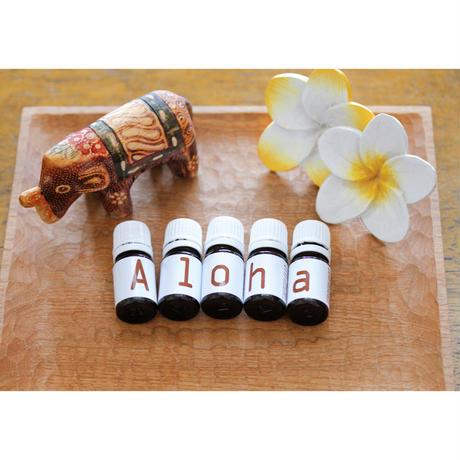 Alohaセラピーセッション