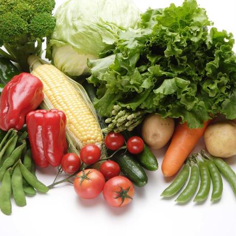 むつみ屋 旬の無農薬野菜セット11品
