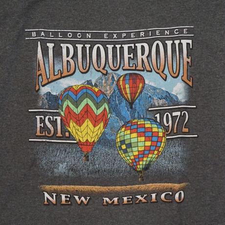 Import Albuquerque L/S Tee (グレー)