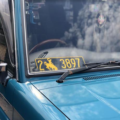 VINTAGE License plate WYOMING
