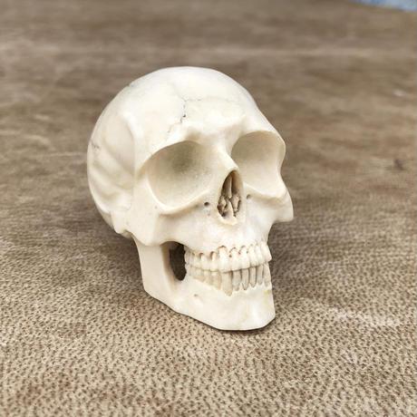 Lee Downey Skull-1
