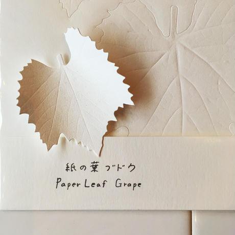 Yasuhiro Suzuki | 紙の葉  ブドウ