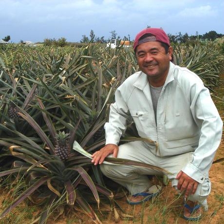 沖縄産の生パイナップル