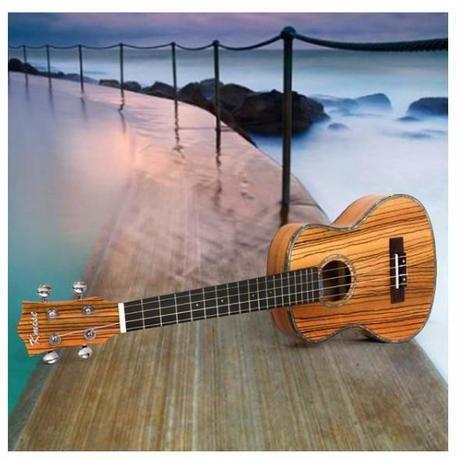 テナーウクレレ コンサート 26インチ 18フレット 初心者 プロ 4弦 模様 柄 ゼブラウッド ハワイアン 特殊