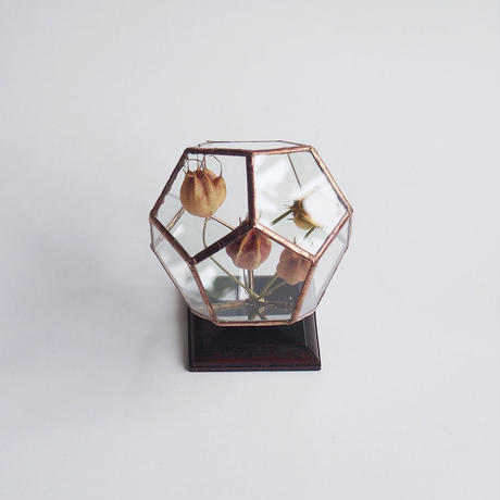 mini terrarium/regular dodecahedron/antique